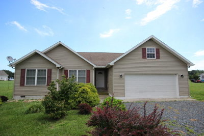 Greenbackville VA Single Family Home For Sale: $154,000