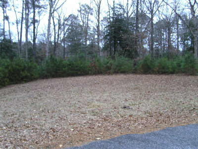 Greenbackville, Horntown Residential Lots & Land For Sale: 65 Indigo Lane