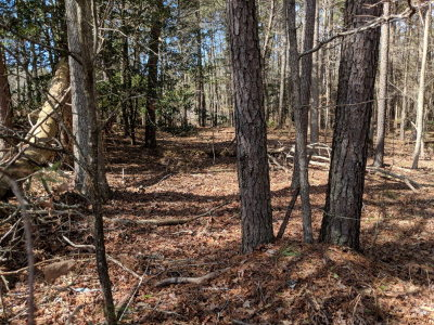 Residential Lots & Land For Sale: 1836 Mutiny Dr