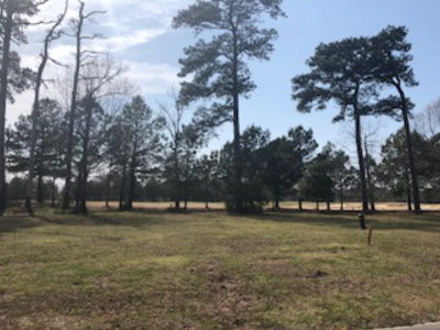 Cape Charles, Capeville, Kiptopeke, Cheriton Residential Lots & Land For Sale: 207 Blue Heaven Rd