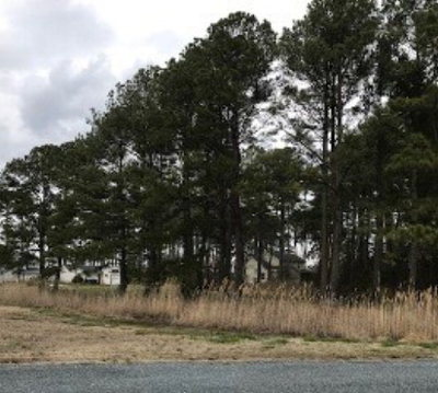 Captains Cove Residential Lots & Land For Sale: 1240 Broadside Dr