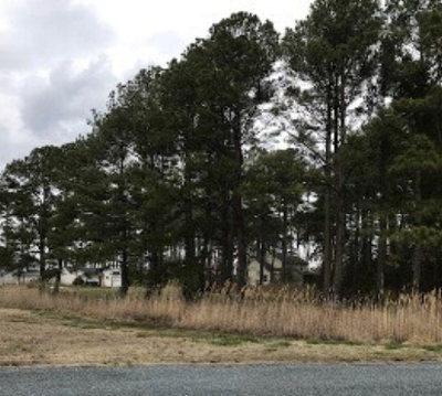 Greenbackville, Horntown Residential Lots & Land For Sale: 1240 Broadside Dr