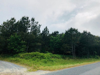 Cape Charles, Capeville, Kiptopeke, Cheriton Residential Lots & Land For Sale: Lot 43 Butler's Bluff Dr