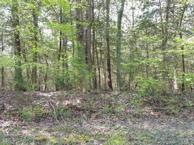 Greenbackville, Horntown Residential Lots & Land For Sale: 3-1781 Yeoman Ct