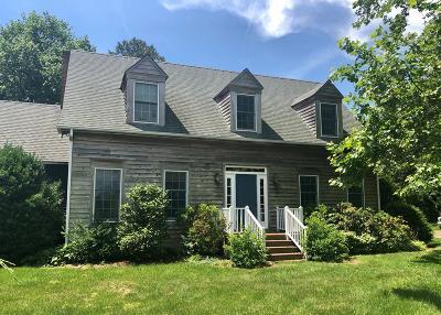 Accomack County, Northampton County Single Family Home For Sale: 19332 Mink Farm Rd