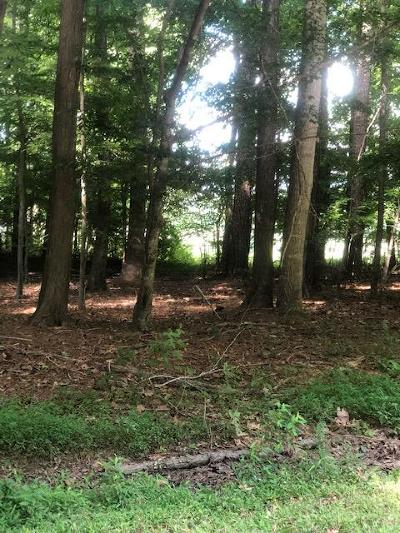 Residential Lots & Land For Sale: 125 Raider Ct