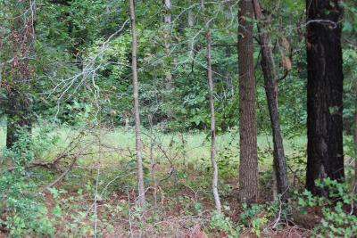 Residential Lots & Land For Sale: 123 Flying Dutchman