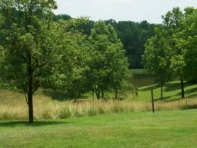 Forest VA Residential Lots & Land For Sale: $134,900