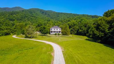 Amherst County Single Family Home For Sale: 1769 High Peak Road