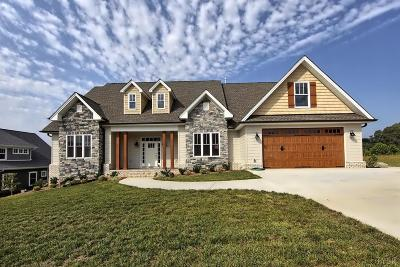 Lynchburg Single Family Home Contingent/Show: 405 Preserve Drive
