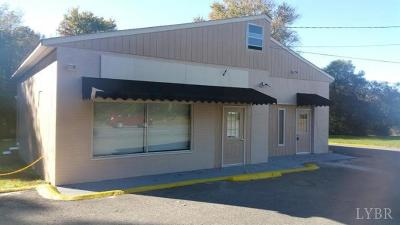 Lynchburg VA Commercial For Sale: $169,900
