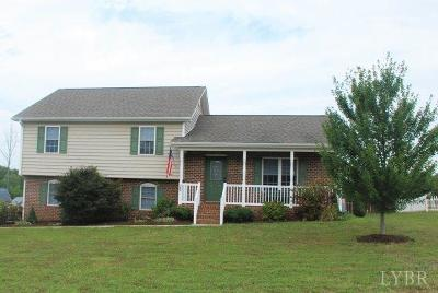 Rustburg Single Family Home For Sale: 399 Valley Drive