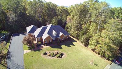Lynchburg County Single Family Home For Sale: 4912 Mountain Laurel Drive