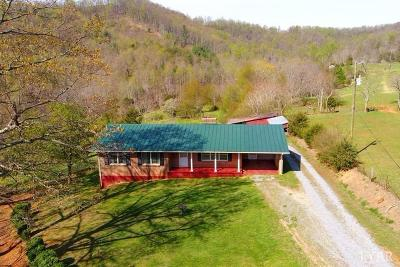 Amherst County Single Family Home For Sale: 355 Panther Mountain Road