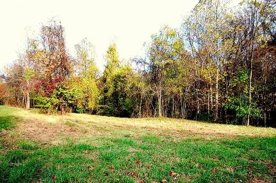 Lynchburg County Residential Lots & Land For Sale: 3135 Moorman Drive