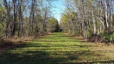 Campbell County, Bedford County, Amherst County, Nelson County, Appomattox County, Lynchburg County Residential Lots & Land For Sale: 273 Spicer Road