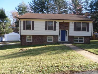 Lynchburg County Single Family Home For Sale: 1708 Texas Avenue