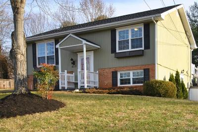 Lynchburg County Single Family Home For Sale: 6117 Pawnee Drive