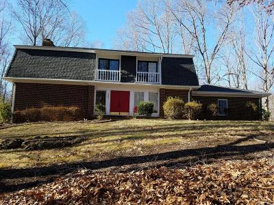 Lynchburg Single Family Home For Sale: 205 Ivy Drive
