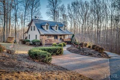 Lynchburg Single Family Home For Sale: 1293 Narrows Lane