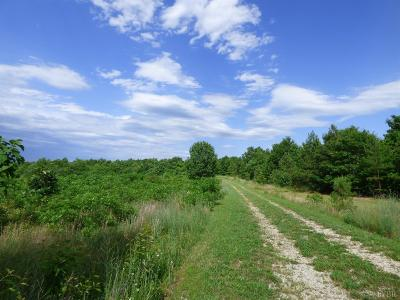 Residential Lots & Land For Sale: Happy Tails Lane