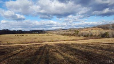 Rustburg VA Residential Lots & Land For Sale: $699,000