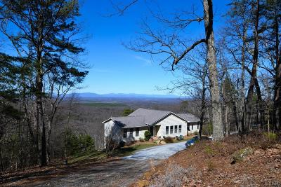 Lynchburg Single Family Home For Sale: 598 Mt Vista Drive