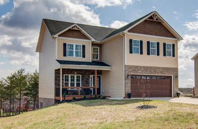 Campbell County Single Family Home For Sale: 179 Turning Point Dr