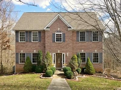 Lynchburg Single Family Home For Sale: 360 Wild Turkey Road