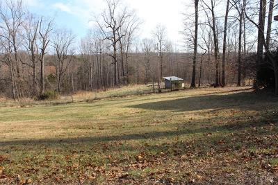 Bedford County Single Family Home For Sale: 9472 Moneta Road