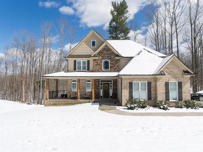 Lynchburg Single Family Home For Sale: 1700 Wiggington Road