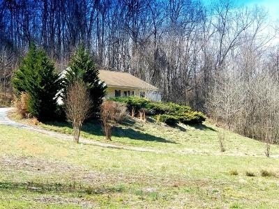 Lynchburg Single Family Home For Sale: 1610 Moormans Road