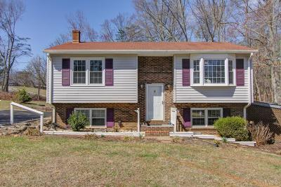 Lynchburg Single Family Home For Sale: 100 Deborah Drive