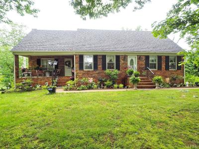 Rustburg Single Family Home For Sale: 378 Sunnymeade Road