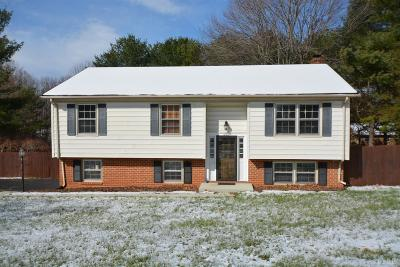 Lynchburg County Single Family Home For Sale: 1701 Laxton Road