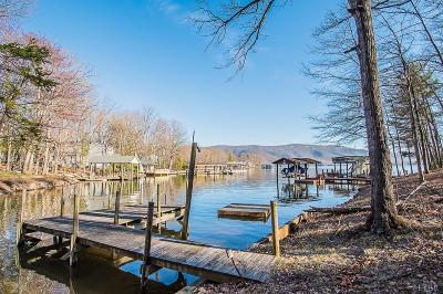 Single Family Home For Sale: 100 Lynchburg Camp Road