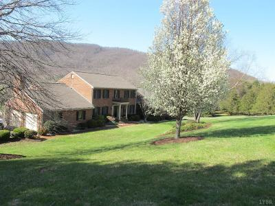 Lynchburg Single Family Home For Sale: 106 Citation Lane