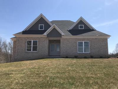 Bedford County Single Family Home For Sale: 1012 Revelry Point