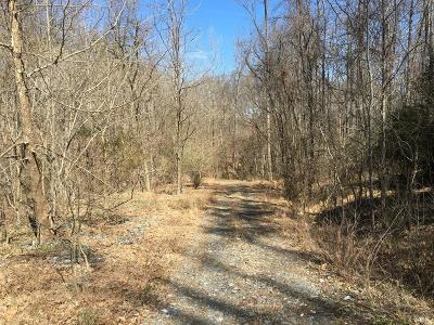 Campbell County, Bedford County, Amherst County, Nelson County, Appomattox County, Lynchburg County Residential Lots & Land For Sale: 2004 Lakeside Drive