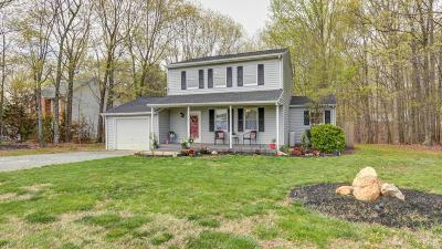 Rustburg Single Family Home For Sale: 1116 Dodson Drive