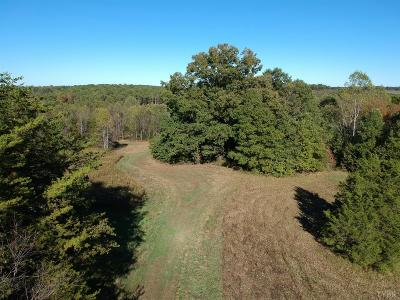 Campbell County, Bedford County, Amherst County, Nelson County, Appomattox County, Lynchburg County Residential Lots & Land For Sale: Spicer Road
