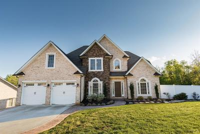 Lynchburg County Single Family Home For Sale: 119 Creekview Court