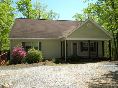 Amherst Single Family Home For Sale: 1587 Larkin Mountain Road