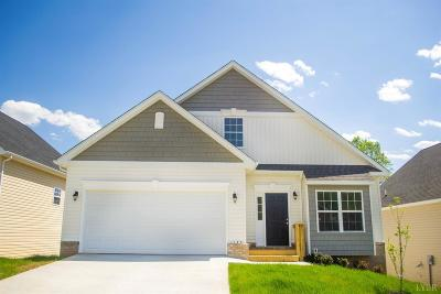 Lynchburg County Single Family Home For Sale: 103 Red Maple Court