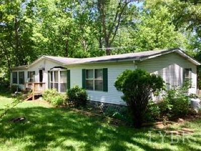 Bedford County Single Family Home For Sale: 1250 Silverbush Street