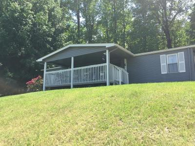 Bedford County Single Family Home For Sale: 2093 Phelps Road