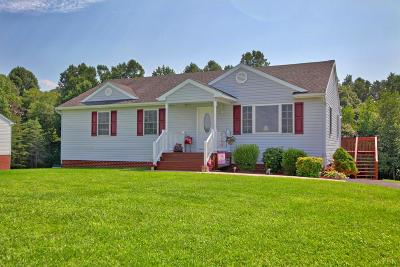 Campbell County Single Family Home For Sale: 576 Spicer Road