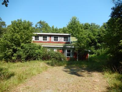 Campbell County Single Family Home For Sale: 31 Bank Road