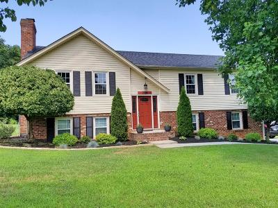 Lynchburg Single Family Home For Sale: 208 Stonehouse Drive