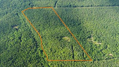 Appomattox County Residential Lots & Land For Sale: Private